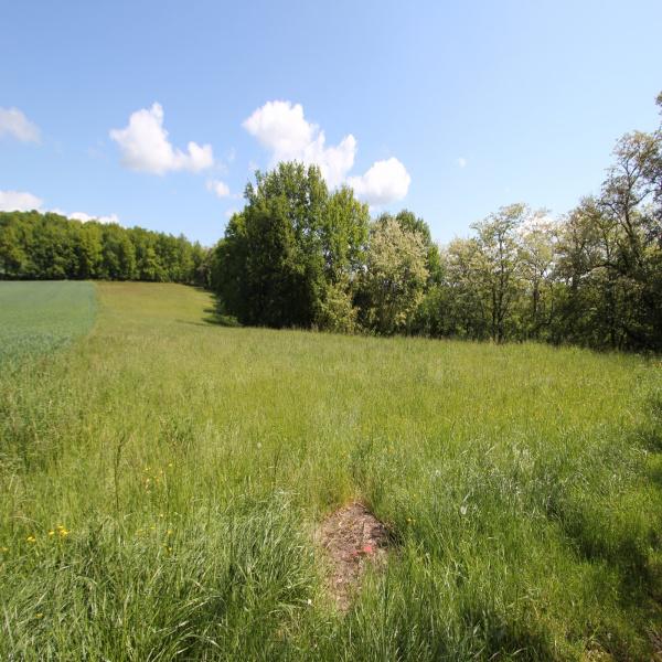 Offres de vente Terrain Le Buisson-de-Cadouin 24480